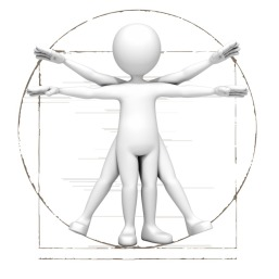vitruvian_stick_figure_800_10013